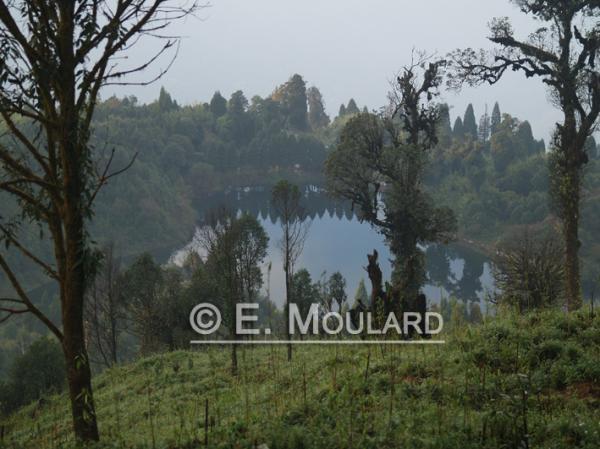 Lac à Darjeeling