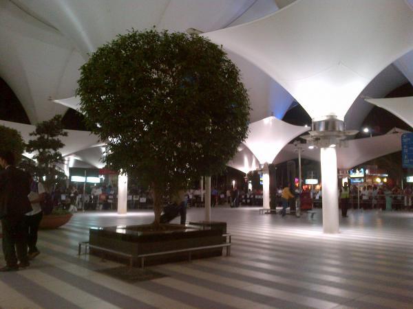 125 - Mumbai international airport arrival hall