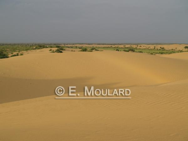 Les dunes de Jaisalmer