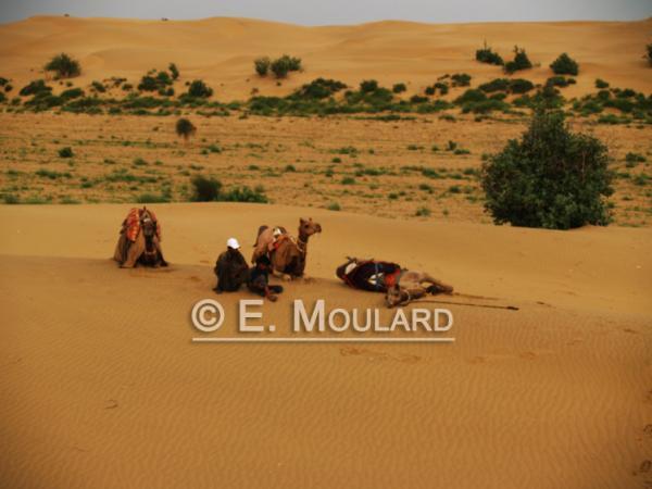 Dans les dunes de Jaisalmer