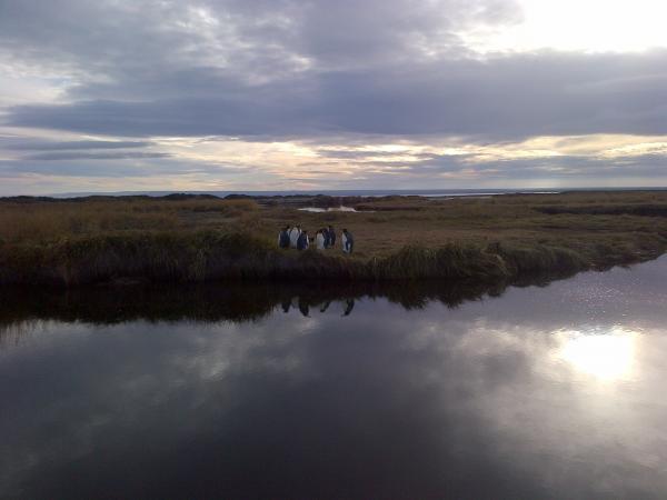 26 - Tierra del Fuego