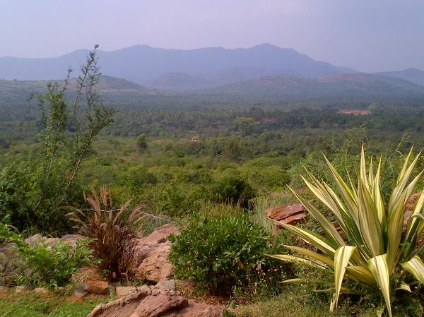168 - In the outskirt of Madurai