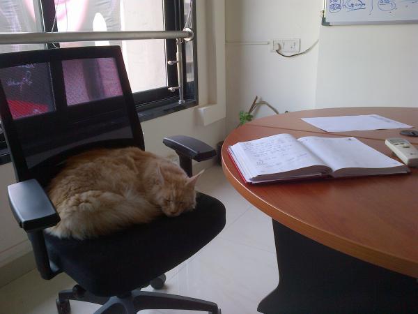 135 - Tough day at work...
