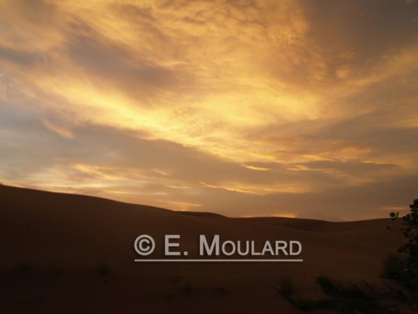 Coucher de soleil dans les diunes de Jaisalmer