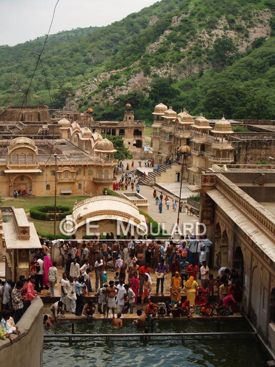 Le temple des singes, dans les environs de Jaipur