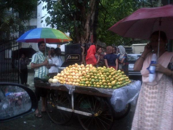5 - The invasion of gay umbrellas