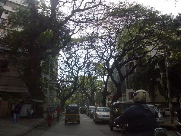 55 - Jeudi a Mumbai