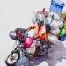L'Inde en dessins 16 Le vélo-cart