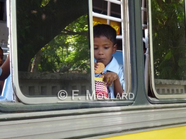 Kid on the bus